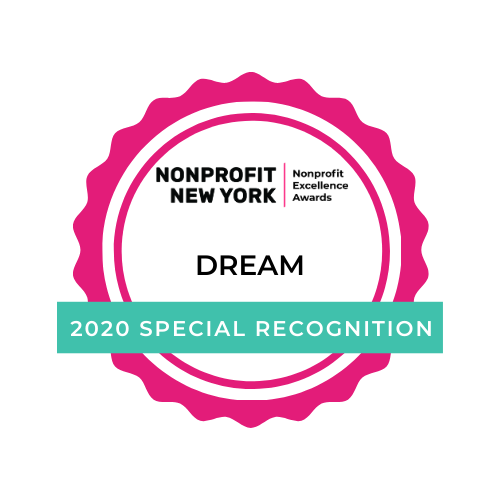 Nonprofit Excellence Awards Insights From DREAM