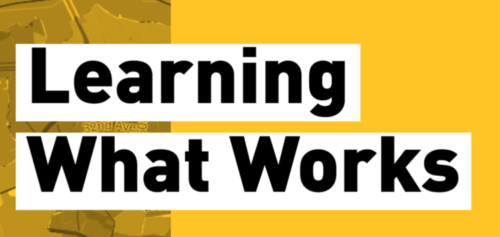 Strengthening a Culture of Data Literacy with New York City Nonprofit Leaders: Lessons Learned